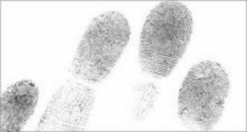 fingerprint images
